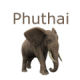 PhuThai Market